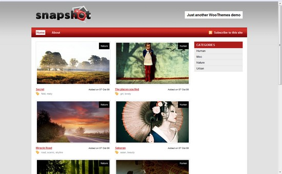 WordPress Themes, Templates - SnapShot