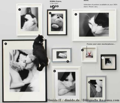 IKEA Katalog 2013 mit Katzencontent