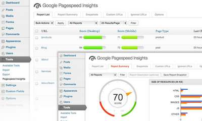 Google Pagespeed Insights für WordPress als Plugin