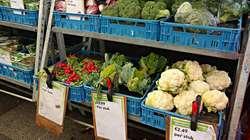 Verkauf- und Preisschilder im Supermarkt